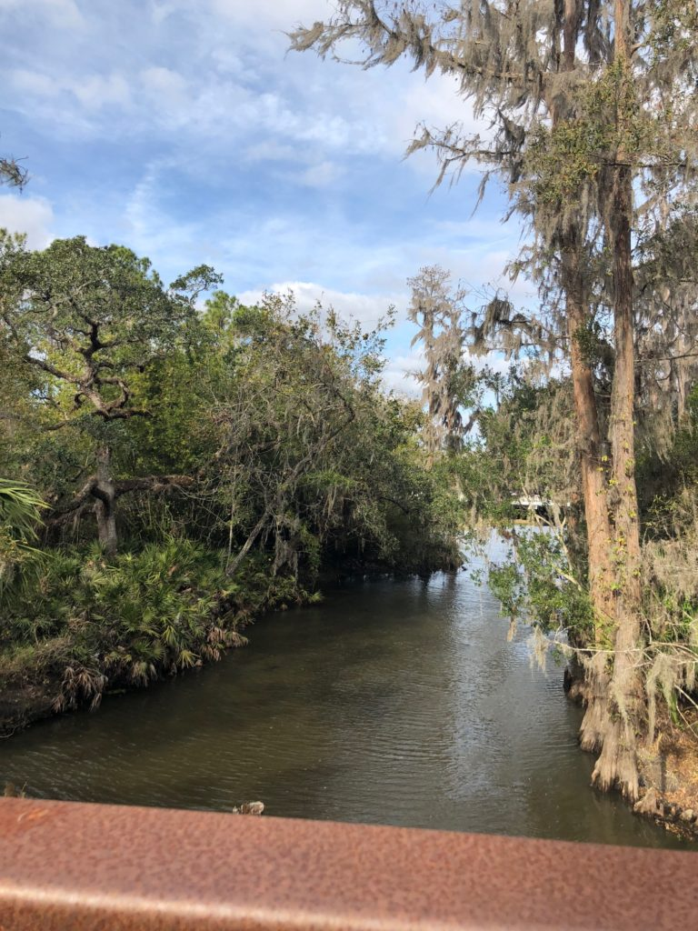 06 passeios grátis em Orlando