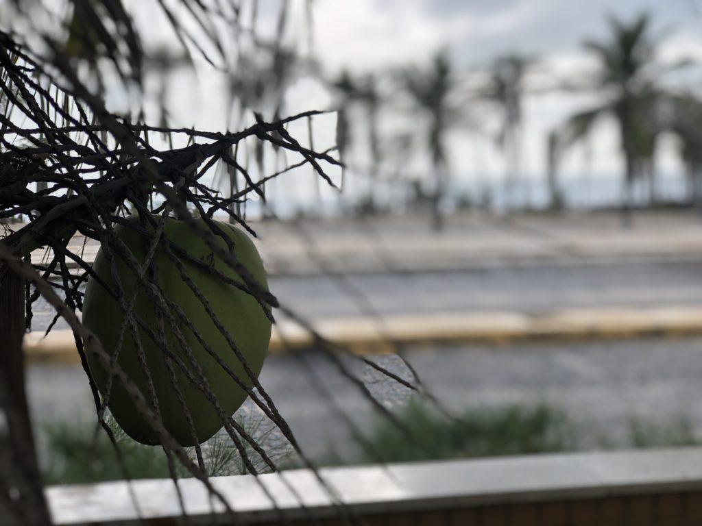 Onde se hospedar em Fortaleza? Hotel Gran Mareiro