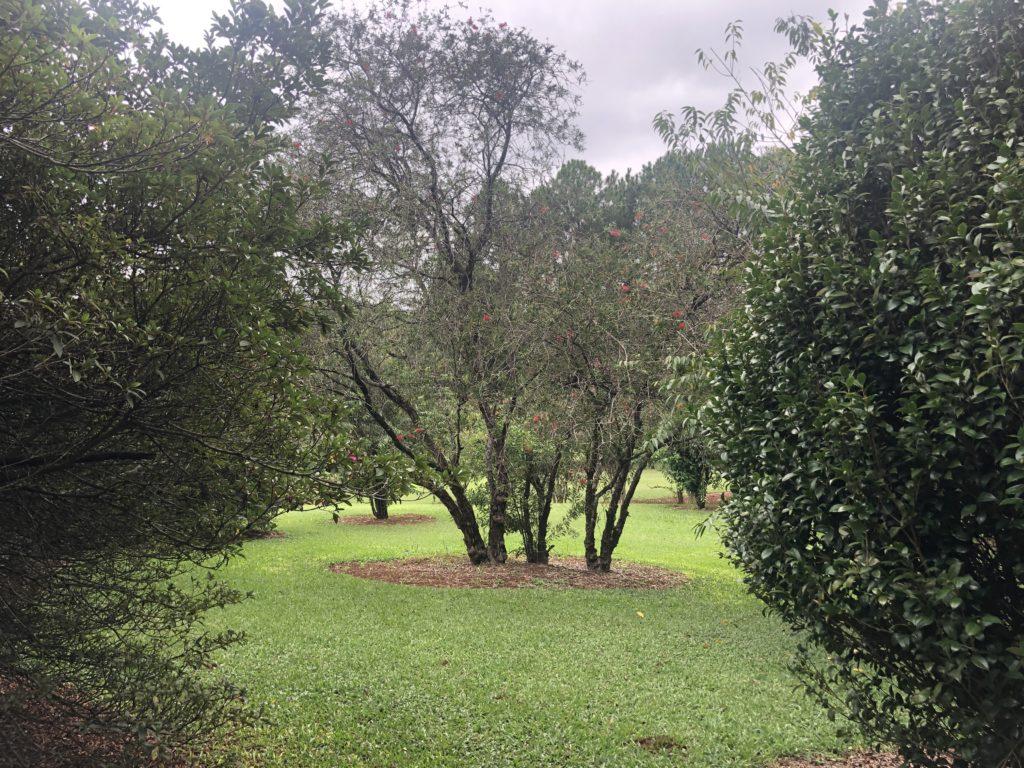 Garden Hill Hotel e Golfe sua hospedagem em São João del Rei - MG