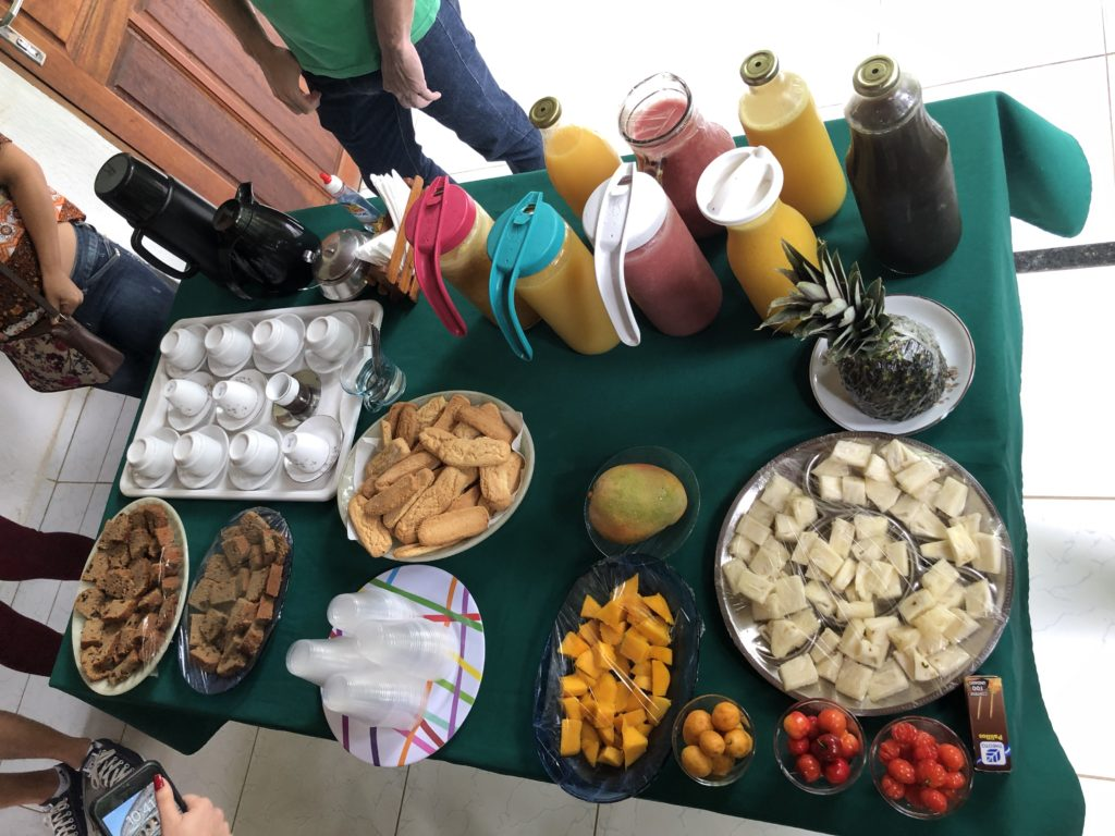 Descubra a Rota verde do Café no Ceará