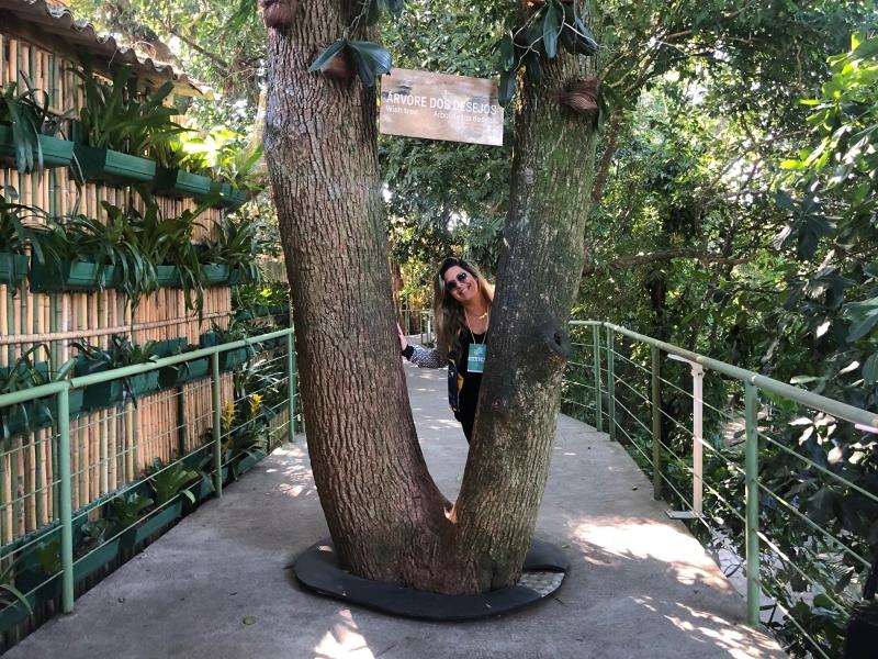 Tour ecológico do Pão de Açúcar