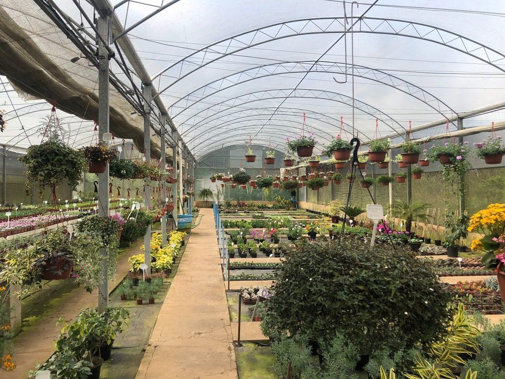 Le Jardin Parque de Lavanda - Gramado